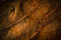Valley of Fire Abstract